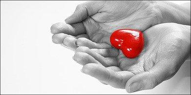 Παγκόσμια ημέρα μεταμόσχευσης