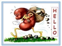Νεφρολιθίαση (πέτρα στα νεφρά)